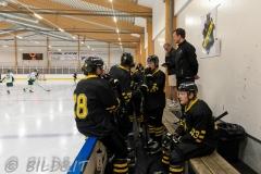 8503741-200828-AIKj20-Ishockey