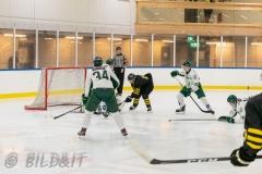 8503768-200828-AIKj20-Ishockey