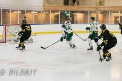 8503808-200828-AIKj20-Ishockey