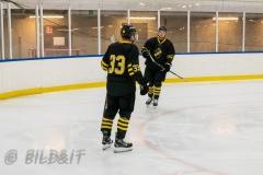 8503819-200828-AIKj20-Ishockey