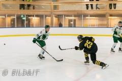 8503837-200828-AIKj20-Ishockey-Philip-Hagerstrom