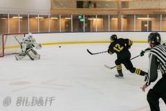 8503864-200828-AIKj20-fredrick-Schlyter-Ishockey