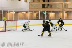8503875-200828-AIKj20-Ishockey