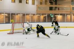8503877-200828-AIKj20-Ishockey