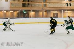 8503883-200828-AIKj20-Ishockey