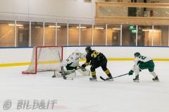 8503886-200828-AIKj20-Ishockey