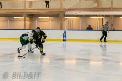 8503899-200828-AIKj20-Ishockey