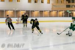 8503906-200828-AIKj20-Ishockey