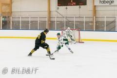 8503929-200828-AIKj20-Ishockey