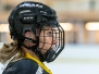201204 AIK  - Brynäs SDHL