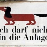 Hundeverbot in Hall in Tirol