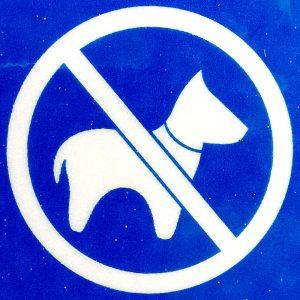 Hundepiktogramm Thylösand; Halland