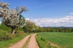 landschaftkl