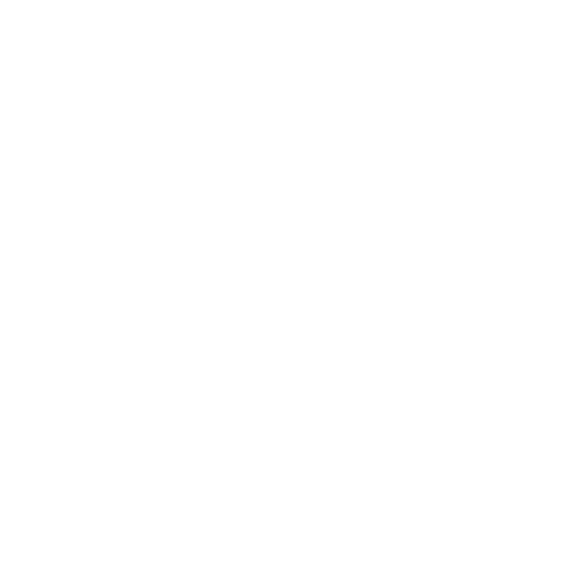 003_Audi