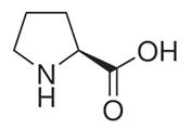 Proline-x