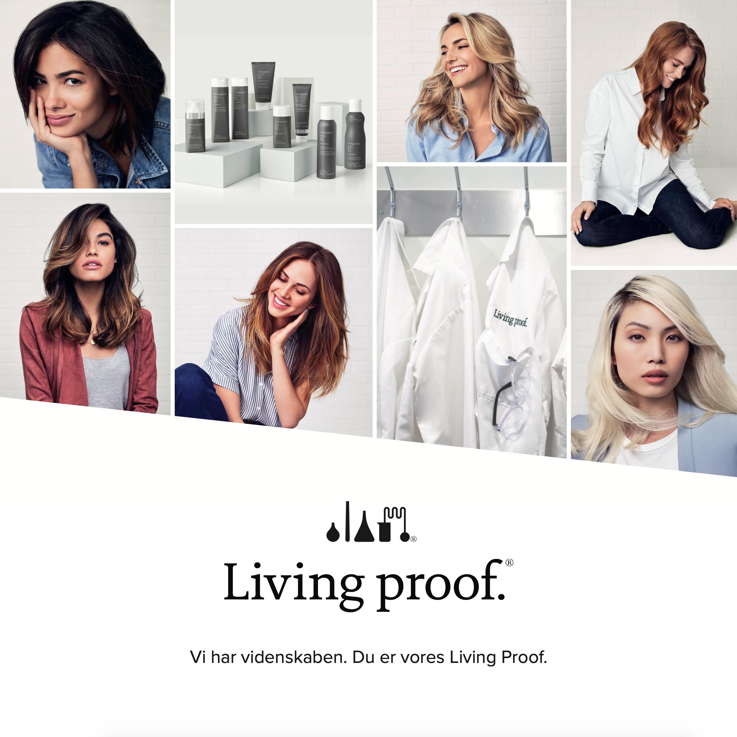 Living Proof brochure artwork