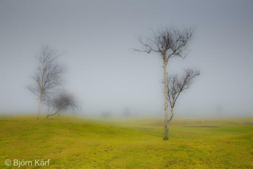 Golf in fog 9