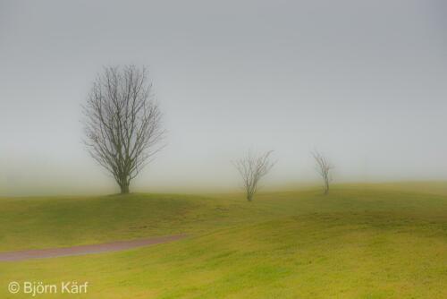 Golf in fog 6