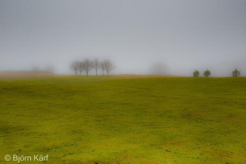 Golf in fog 8