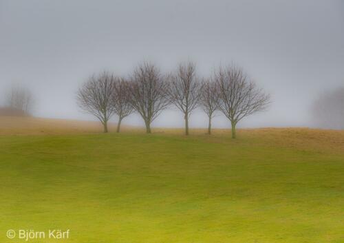 Golf in fog 2
