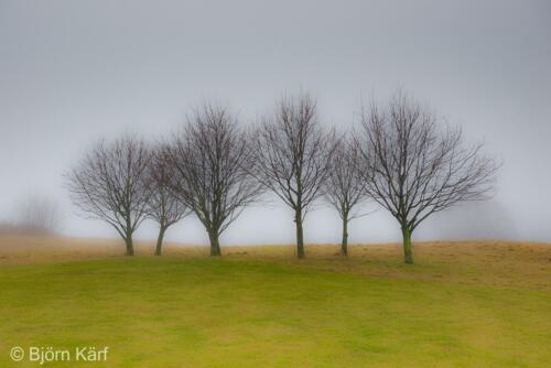 Golf in fog 10