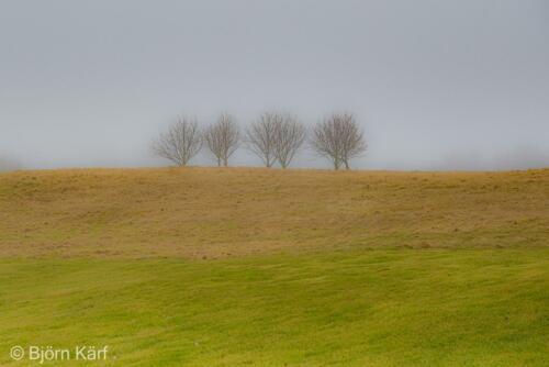 Golf in fog 5