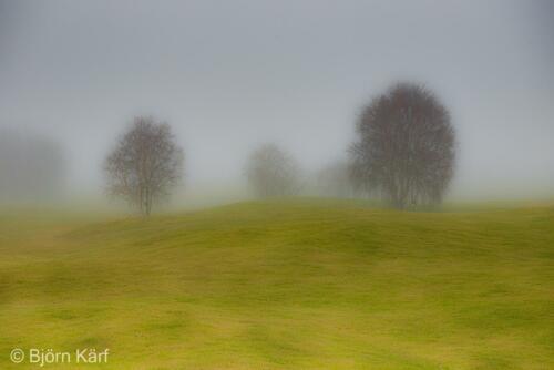 Golf in fog 3