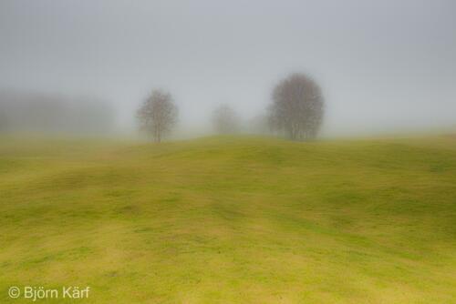 Golf in fog 1