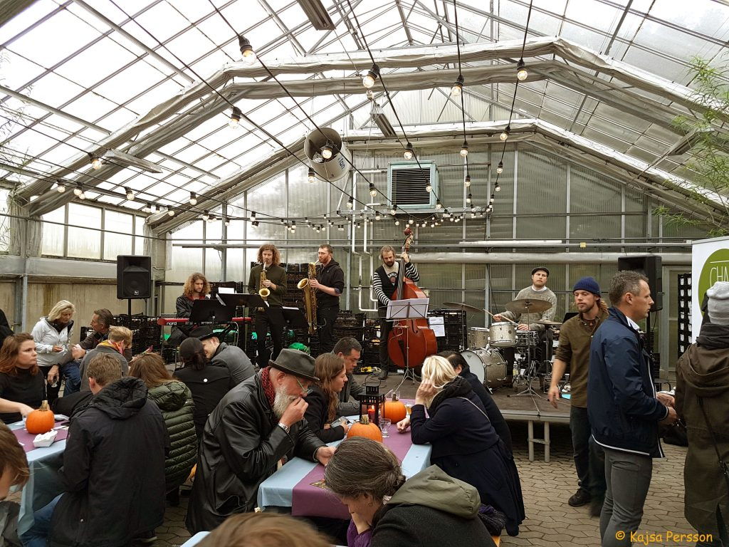 Jazzband, Slottsträdgården, Malmö och ölfestival i växthuset