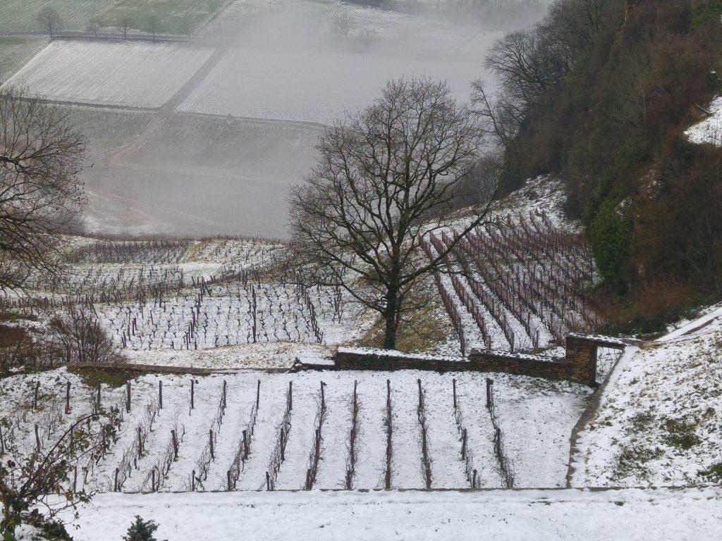Vinfälten i Jura under vintertiden