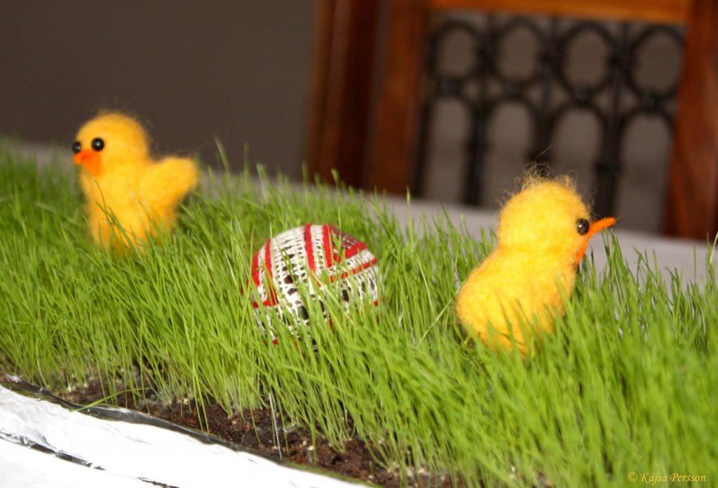 Kycklingar i det gröna på vår påskdukning