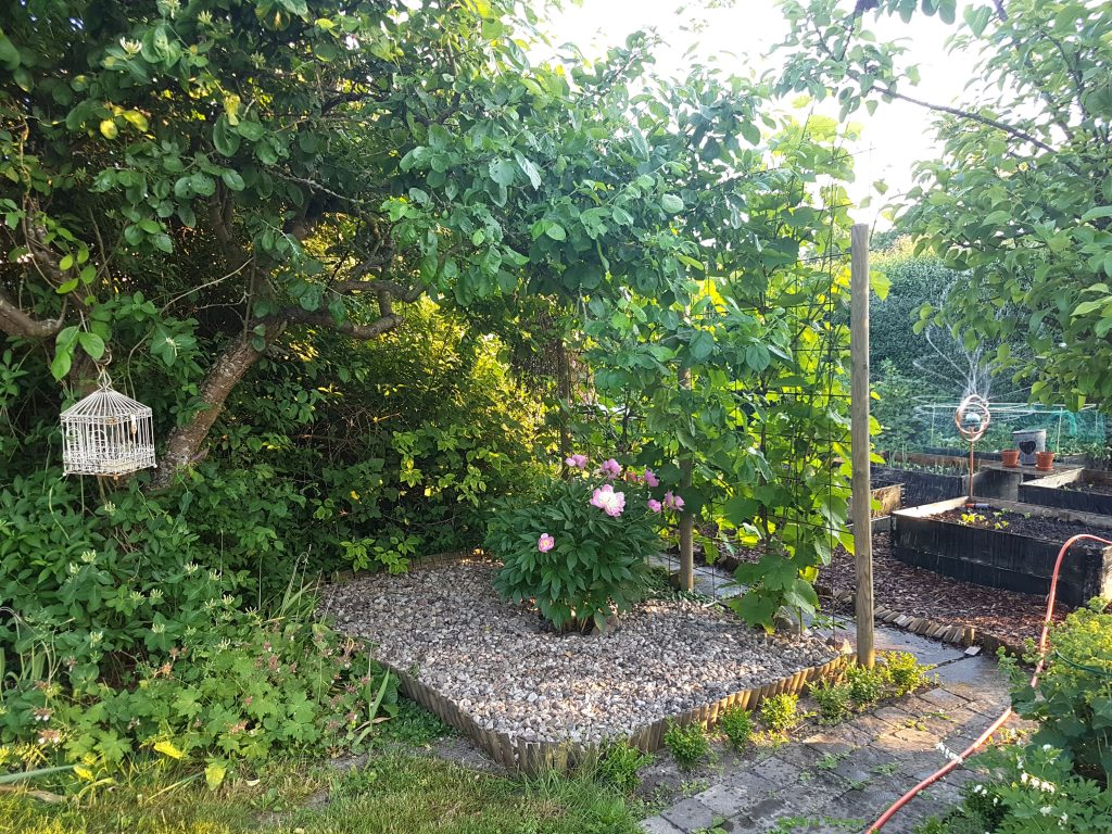 En bit av koloni trädgården
