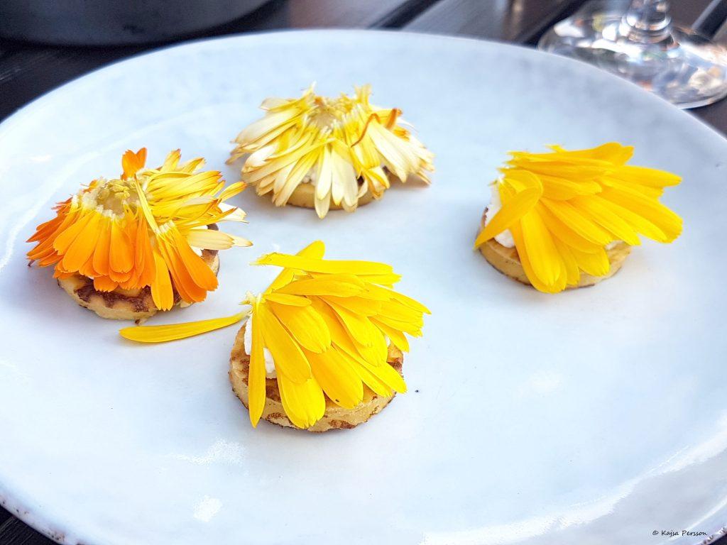 Surdegs plättar med Färskost på BBuffel Mozzarella, Persika crème  från Skåne och ringblomma på toppen på Restaurang Lyran