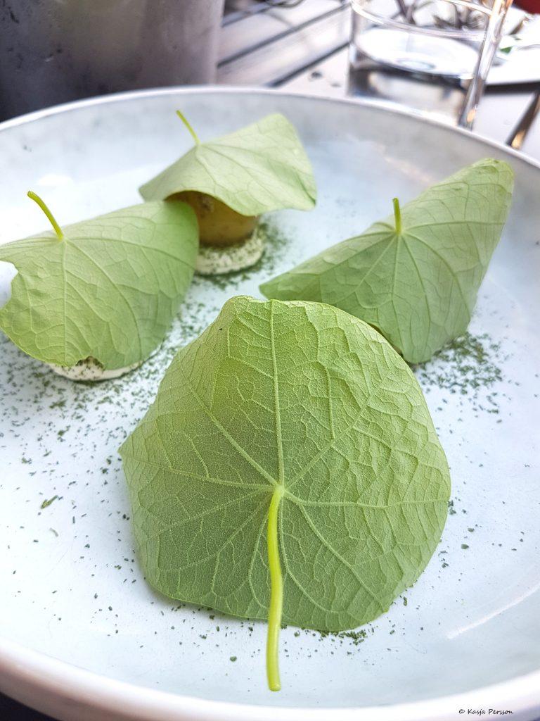 Nya Solistpotatis på en pepparrots crème med picklade senapsfrön och blad från Krasse på Retaurang Lyran.