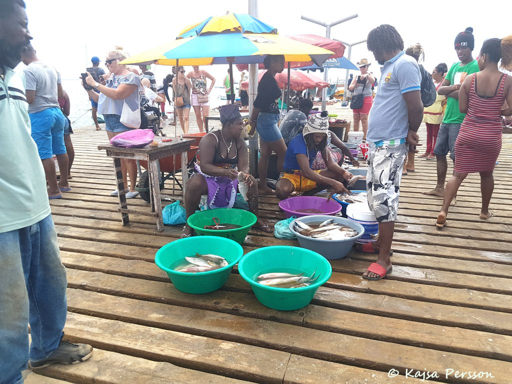 Fisken den sköljs, fjällas och rensas på piren varje dag Santa maria, Kap Verde