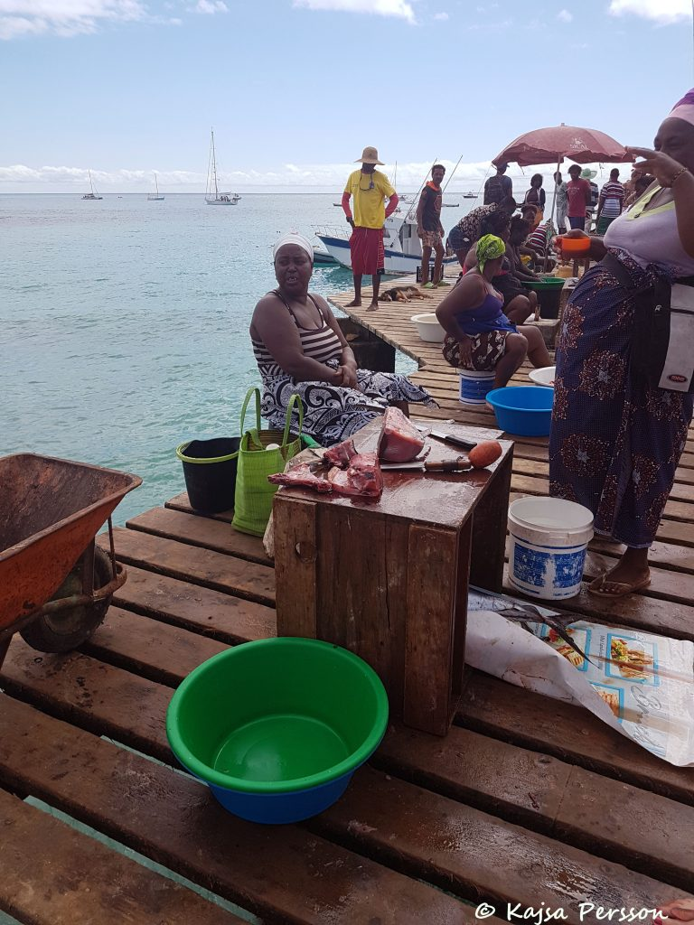 Tonfisk till salu på piren i Santa Maria, Kap Verde