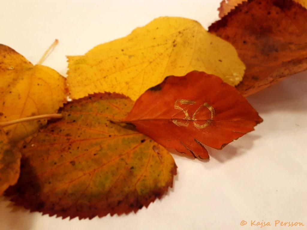 DIY Löv konfetti med 50 skrivet med guldpenna