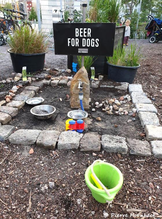 Beers for dog, BRLO Berlin