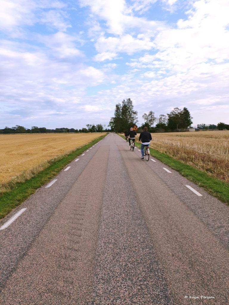 cyklister på en landsväg på väg till Hörte Brygga