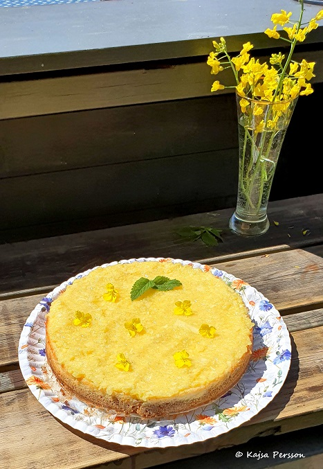 Pinacolada Cheesecake