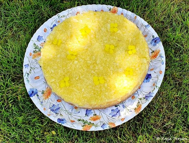 Solskensgul Pinacolada Cheesecake