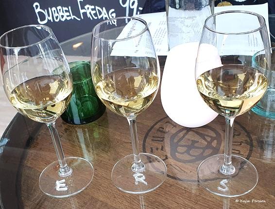 Vingården i Klagshamn viner