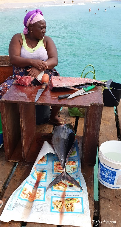 Tonfisk på bryggan Kap Verde