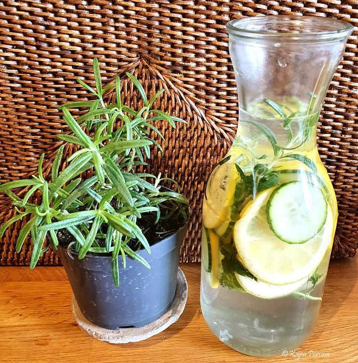 Detox vatten med citron rosmarin gurka och mynta