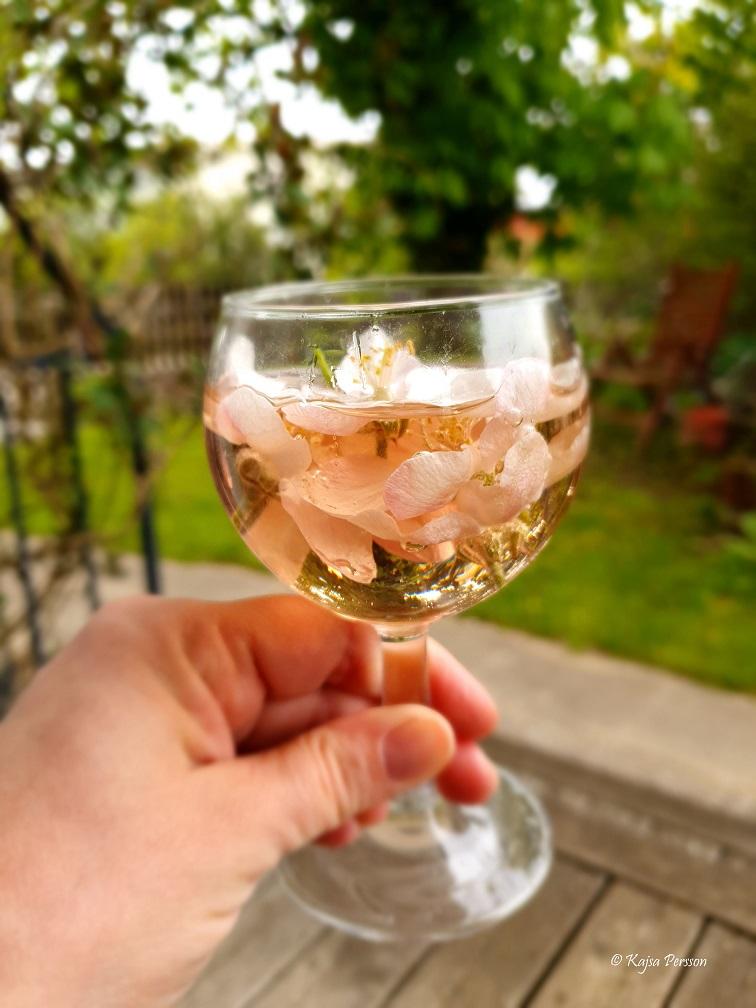 Ett glas rosevin med äppleblommor i glaset