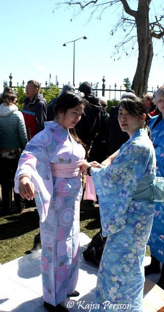 Två Geishor som hjälper varandra på Sakura festivalen i Köpenhamn 2017.Sakura betyder körsbärsblommor på Japanska