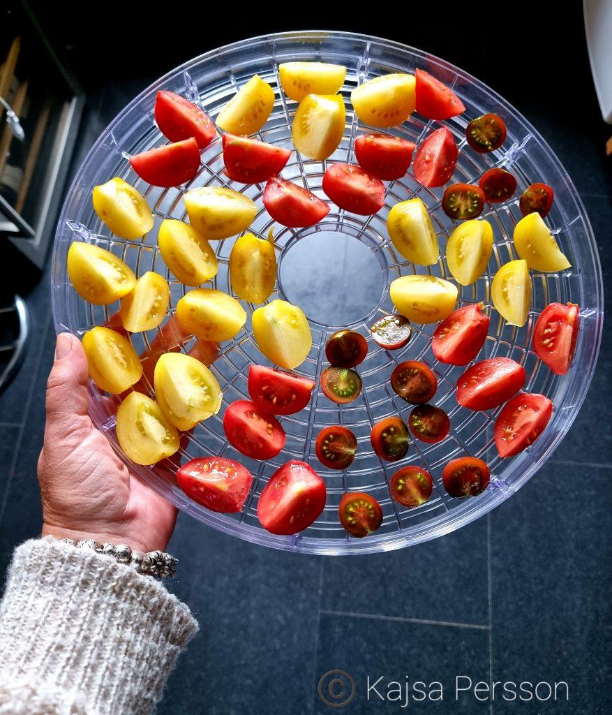 Tomater färdiga att torkas