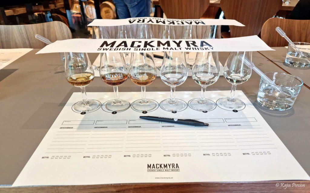 Whiskey provning och ginprovning med mackmyra