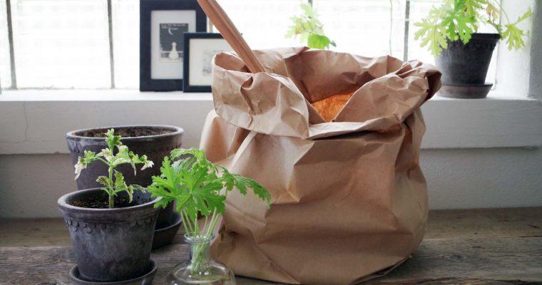 Måste man köpa specialjord till sina krukväxter?