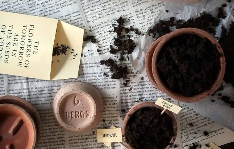 Fixa en planteringsplats inomhus